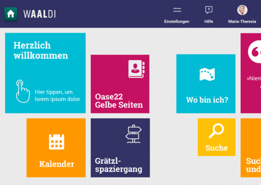 WAALDI Interface